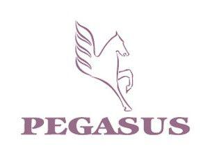 Pegasus Dental